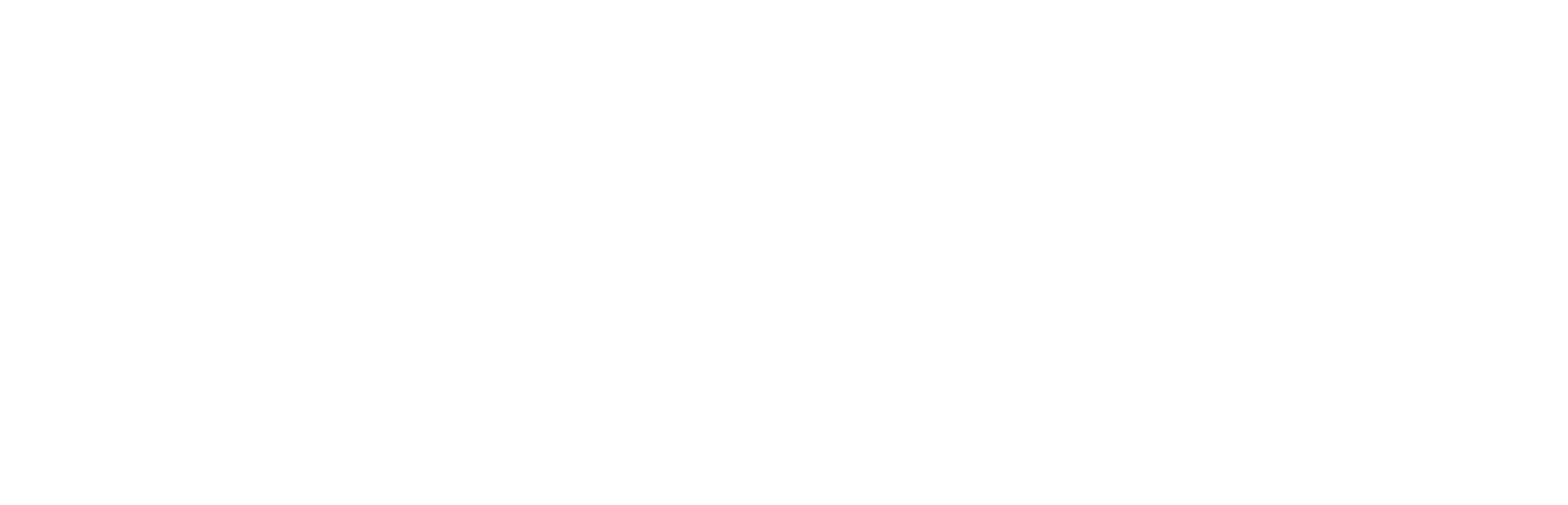 CARE Logo White